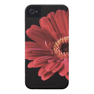 Red Gerbera flower Case-Mate iPhone 4 Case