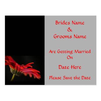 Red Gerbera Flower Wedding Save The Date Postcard