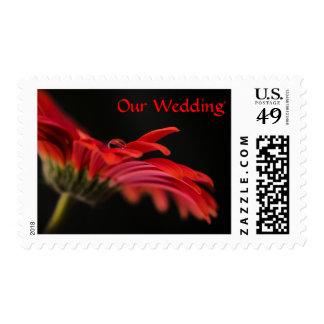 Red Gerbera Flower Wedding Stamps