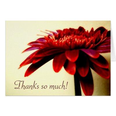 Red Gerbera Thank You Card
