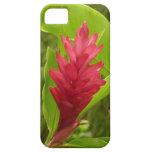 Red Ginger Flower I iPhone SE/5/5s Case