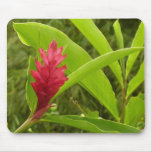 Red Ginger Flower I Mouse Pad