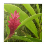 Red Ginger Flower I Tropical Nature Small Square Tile