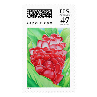 Red Ginger Watercolor Postage