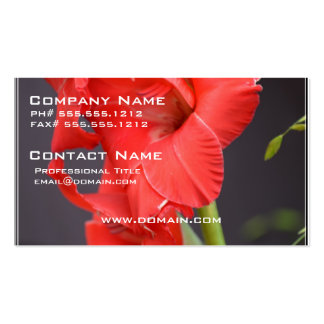 Red Gladiola Flowers Business Cards