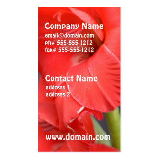 Red Gladiola Flowers Business Card Templates