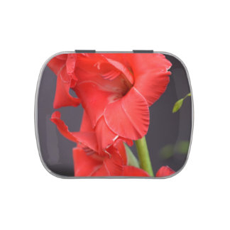 Red Gladiola Flowers Jelly Belly Tins