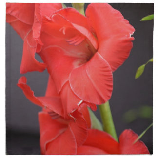 Red Gladiola Flowers Cloth Napkins