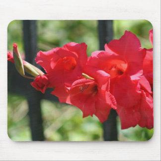 Red Gladiola mousepad