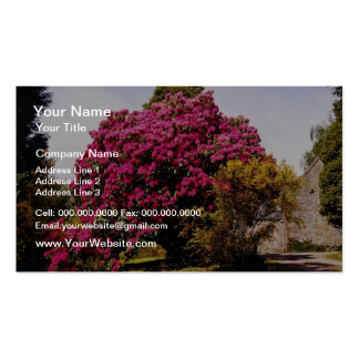 Red Glengarry Parish Church, Scotland flowers Double-Sided Standard Business Cards (Pack Of 100)