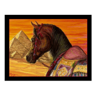 Red & Gold Arabian horse postcard