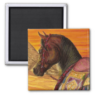 Red & Gold Arabian horse square magnet