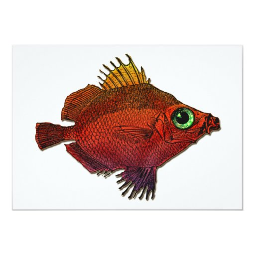 Red Gold Fantasy Discus Fish Card
