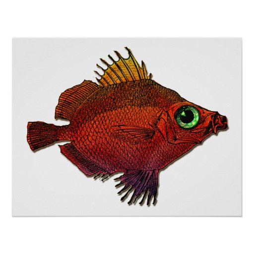 Red Gold Fantasy Discus Fish Poster