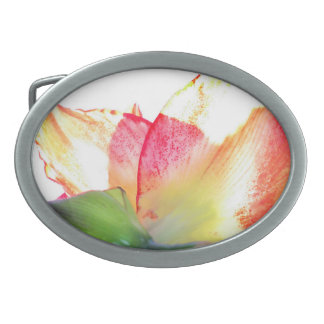 Red Gold Green Amaryllis Abstract Oval Belt Buckles