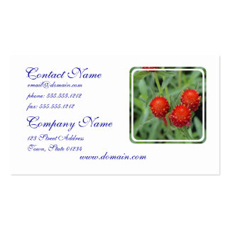 Red Gomphrena Flowers Business Card