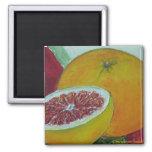 Red Grapefruit Fridge Magnet