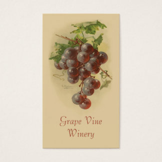 Red grapes fruit sales business card