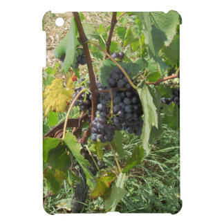 Red grapes in a vineyard iPad mini cover
