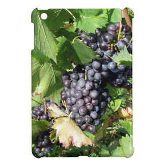 Red grapes in a vineyard iPad mini covers