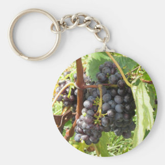 Red grapes in a vineyard keychain