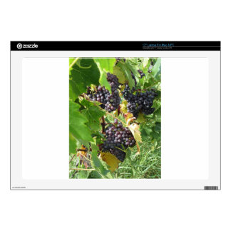 Red grapes in a vineyard laptop skin