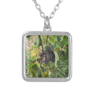 Red grapes in a vineyard silver plated necklace