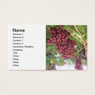 Red Grapes on the Vine Business Card