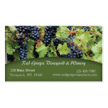 Red Grapes Vineyard Business Card