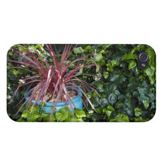 Red Grassy Plant in Ivy Cases For iPhone 4