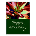 Red & Green Agave Card