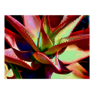 Red & Green Agave Print