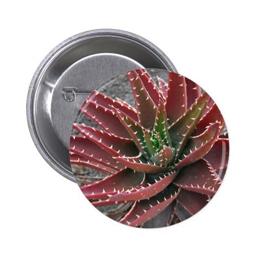 Red-Green Aloe 5 Button
