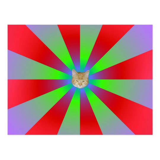 Red Green and Lilac Sunbeams + Cat Postcard