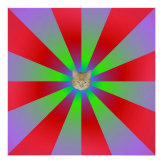 Red Green and Lilac Sunbeams + Cat Poster