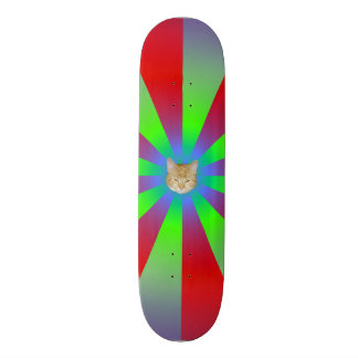 Red Green and Lilac Sunbeams + Cat Skateboard