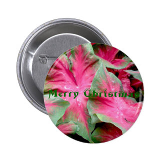 Red Green Caladium Merry Christmas Badge Buttons
