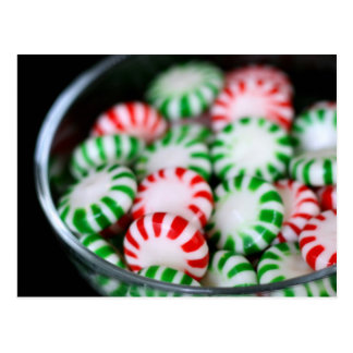 Red & Green Christmas Mints Postcard