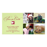 Red green dove peace on earth holiday greeting custom photo card
