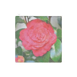 Red green leaf Camellia flower close-up Stone Magnet