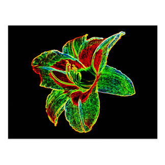Red/Green Neon Daylily Postcard