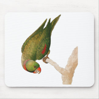 Red Green Parrot Mouse Pad