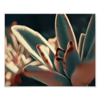 Red/Green Succulent 8x10 Archival Matte Poster