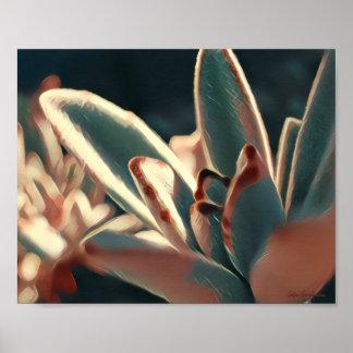 Red/Green Succulent 8x10 Semi-Gloss Poster Print