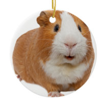 red guinea pig ceramic ornament