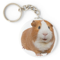 red guinea pig keychain