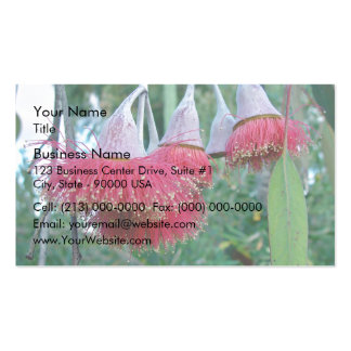 Red Gumnuts flowers Business Card