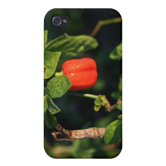 red habanerno hot pepper against leaves iPhone 4/4S case