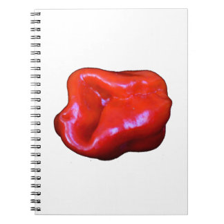 red habanero single cutout notebook