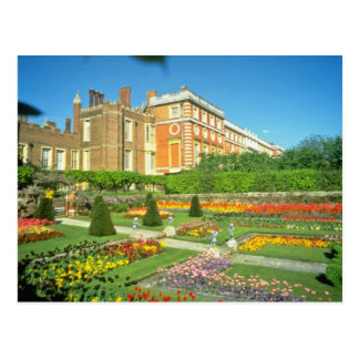 Red Hampton Court, Surrey, England flowers Postcard